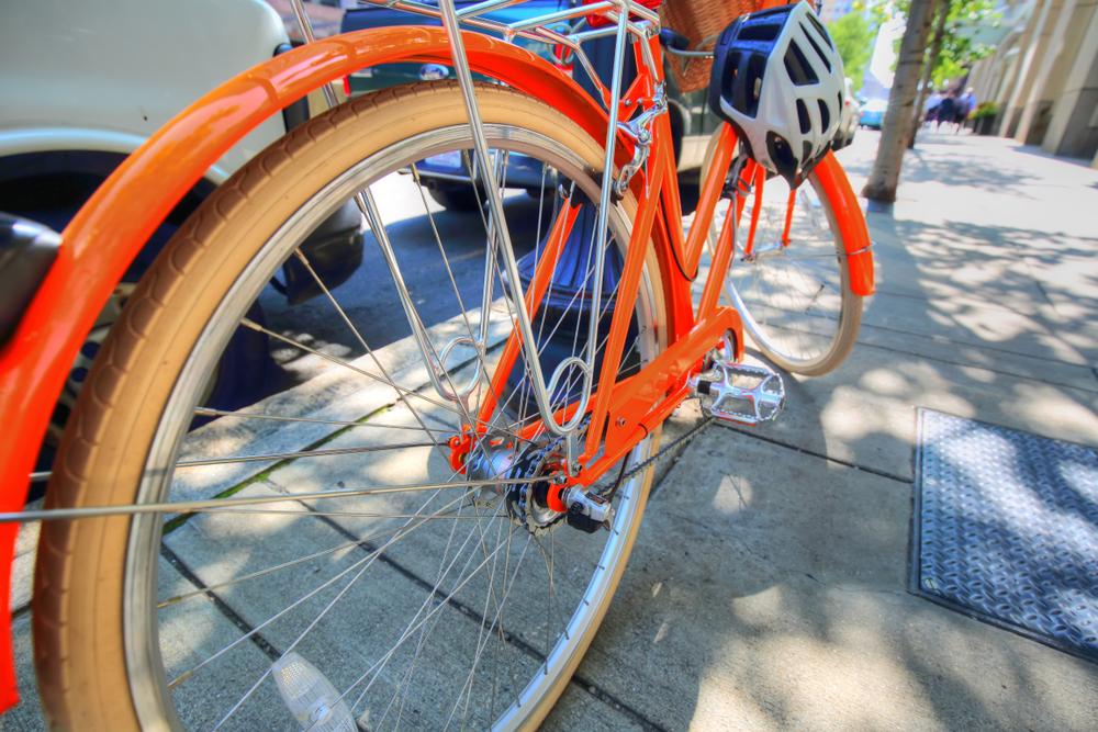 Boston's Best Bike Trails - Where to Bike in Boston | Taj Boston Hotel