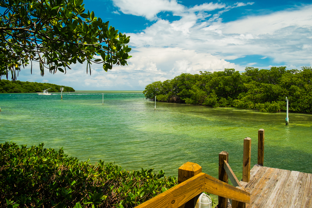 Off the Beaten Path in Key West