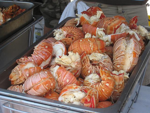 lobsterfest 1