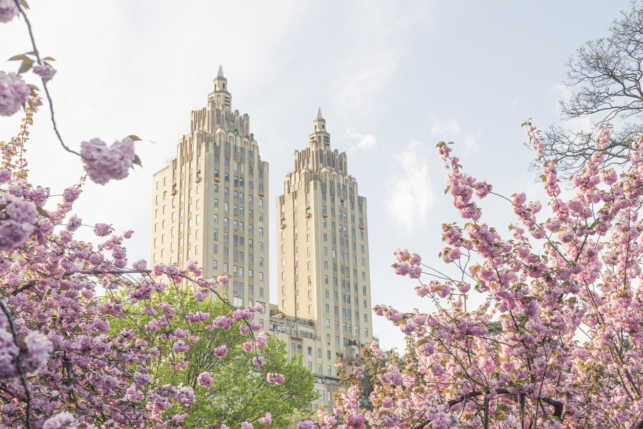 What To Do When New York is in Full Bloom