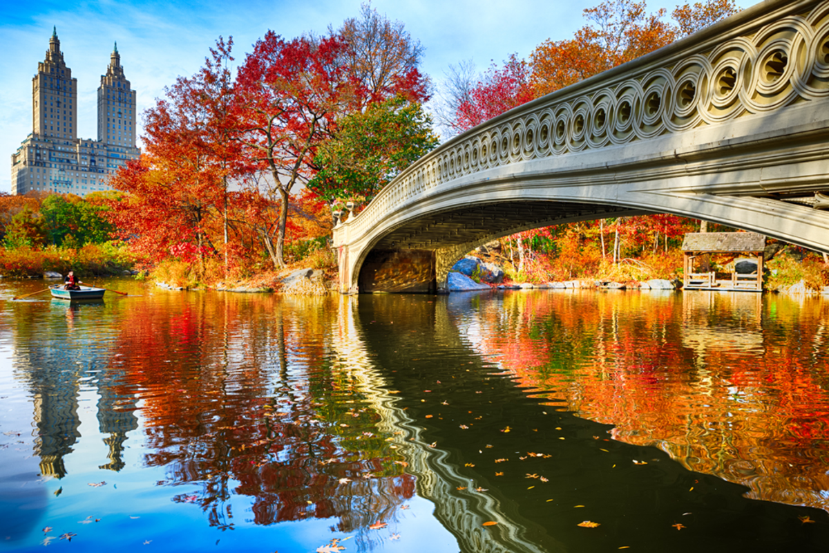 central-park-and-bow-bridge-in-autumn