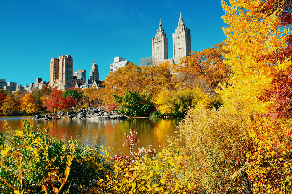 The Manhattan at Times Square Guide to Central Park in the Fall