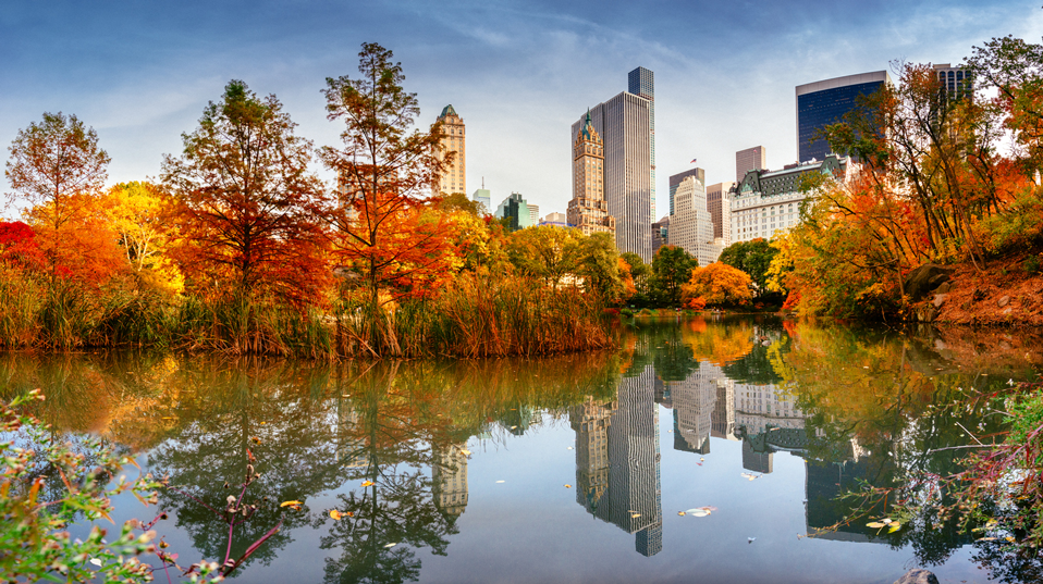 fall-foliage-in-central-park