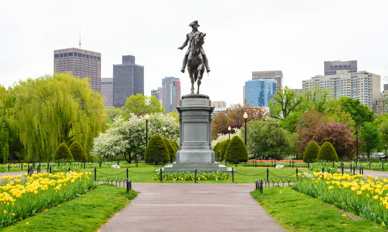 Summer in the City: Outdoor Boston Events You Can't Miss