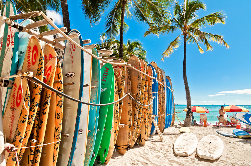 Line up of various surfboard colors and sizes standing vertical in outdoor surboard rack on beach