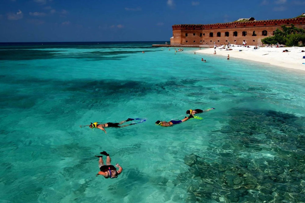 Best of Key West: Trip to Dry Tortugas National Park