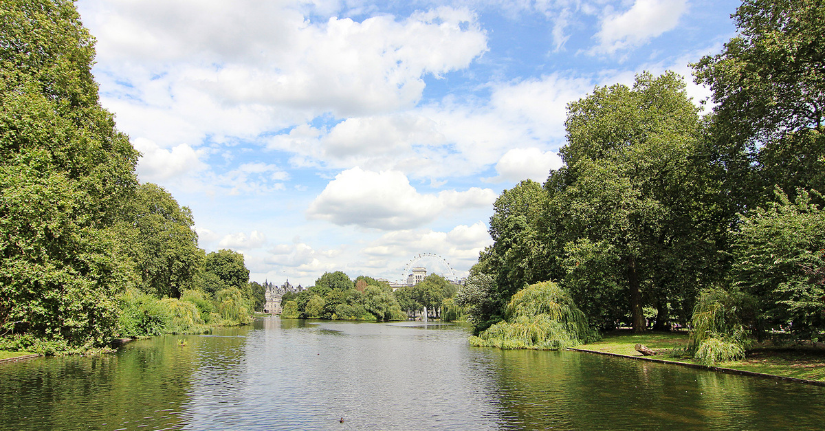 The lovely St. James Park by Buckingham Palace