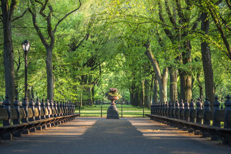 The Hotel Beacon Guide to Central Park: Part 2