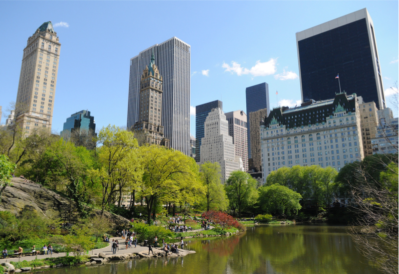 Image of summer time in Central Park