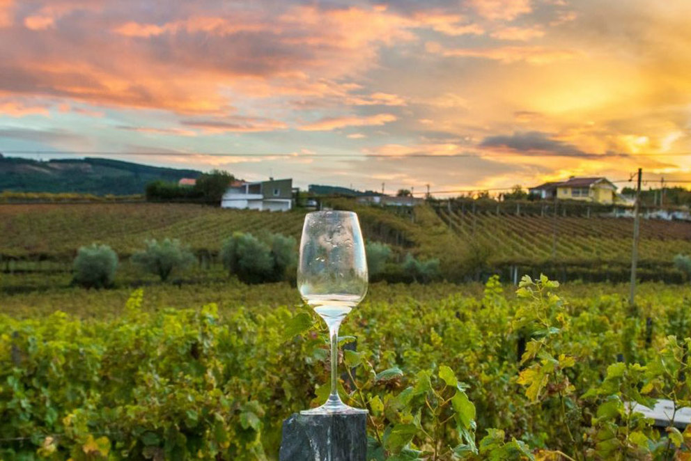 10 of the Best Napa Valley Wine Tours