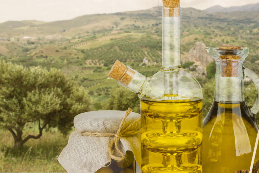 5 of the Best Napa Olive Oil Tasting Tours