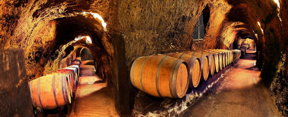 We Know Where to Find the Best Napa Winery and Caves