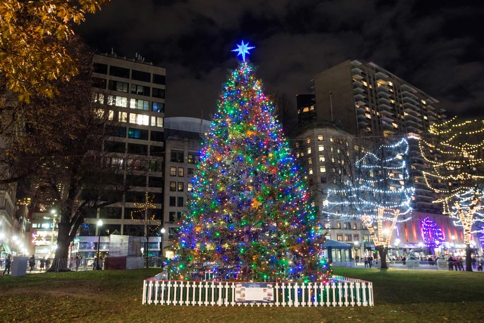 boston-common-tree-lighting-100-years-since-the-halifax-explosion