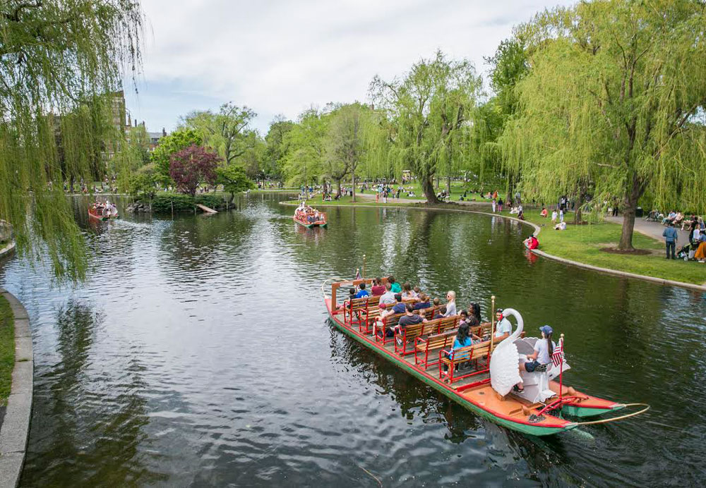 in-the-neighborhood-the-swan-boats-at-bostons-public-garden