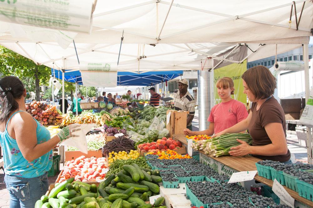 in-the-neighborhood-copley-square-farmers-market
