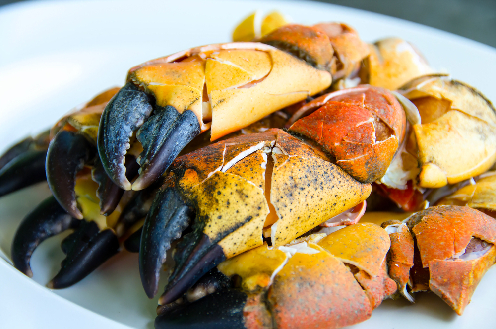 Where to Eat Stone Crab in Key West
