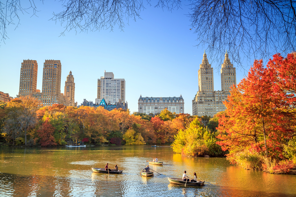 Best Leaf Peeping Experiences in NYC