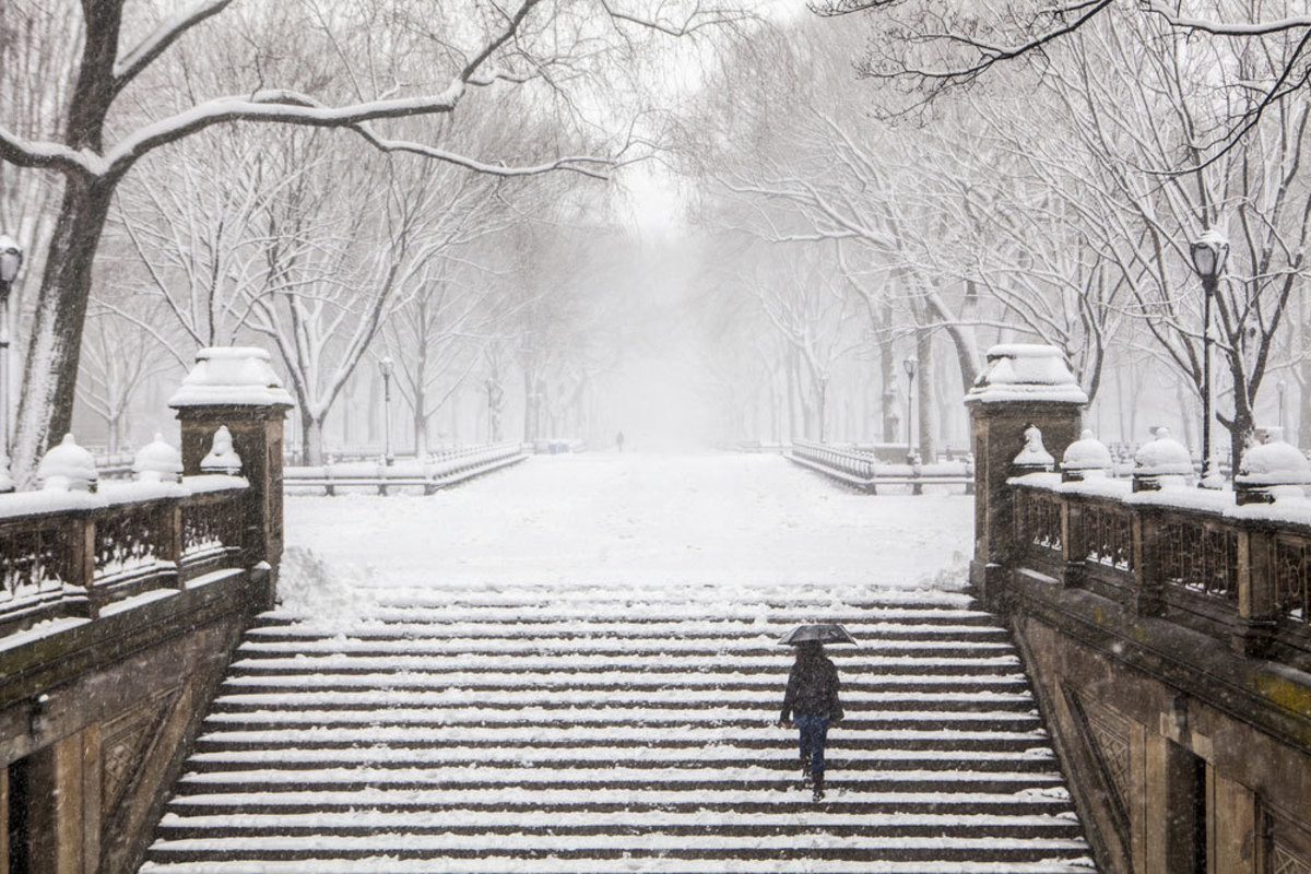 woman-climbing-steps-in-central-park-on-winter-day