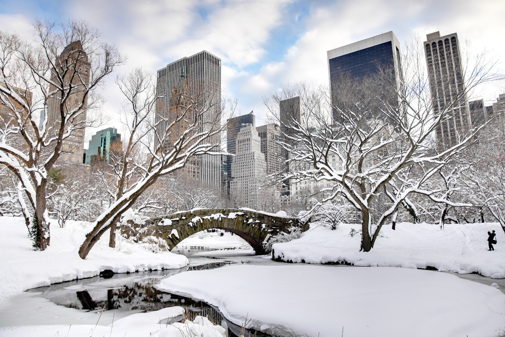 5 Winter Activities In New York City