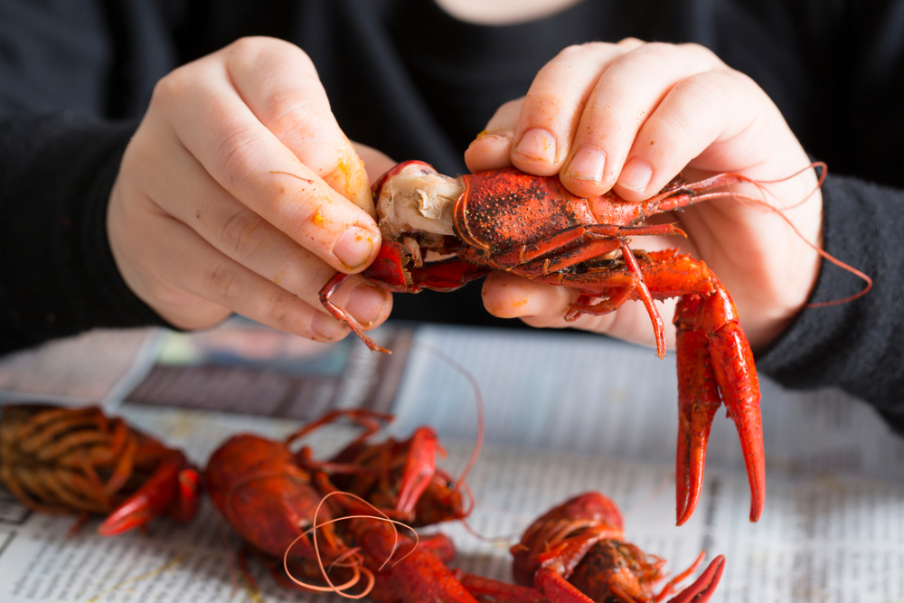 guide to crawfish season in new orleans