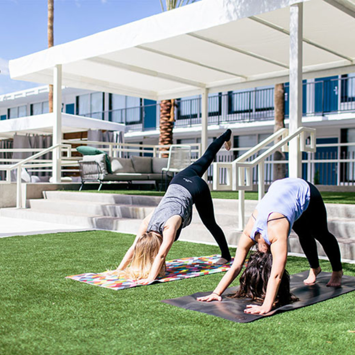 yoga-in-the-lawn