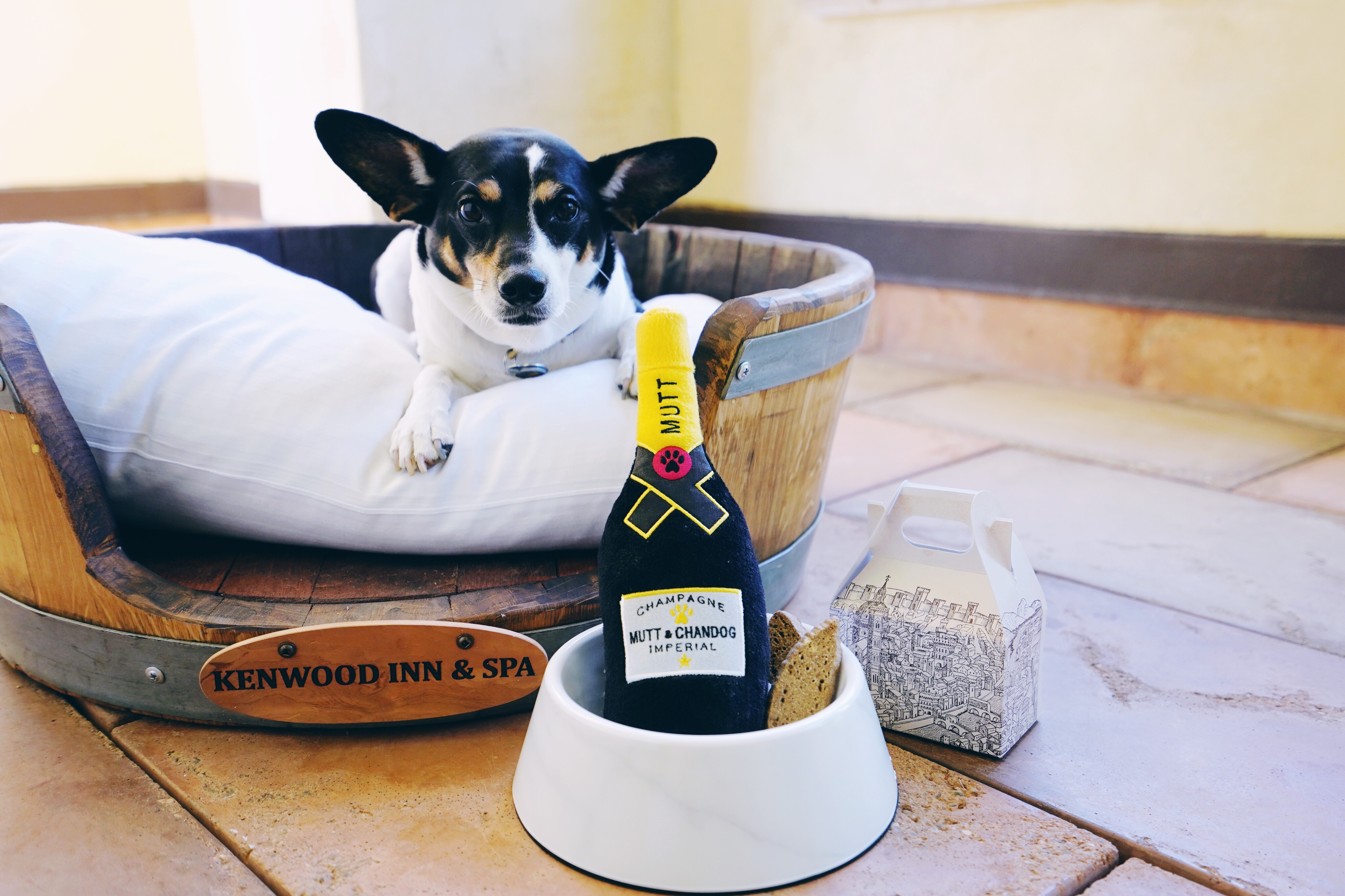 Sonoma Pet Friendly Hotel
