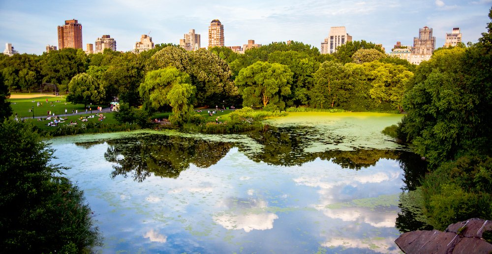 A Spring-Inspired Self-Guided Walking Tour Of Central Park